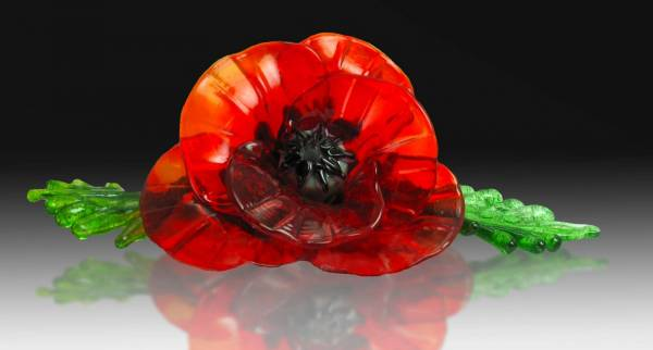 Red Poppy with Leaves